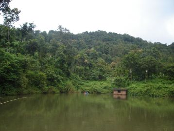 A panoramic view of the pond